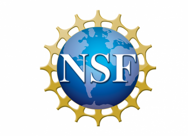 "=""NSF"